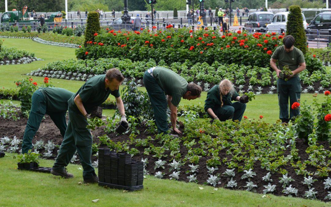 Pourquoi faire appel à un paysagiste pour votre jardin ?